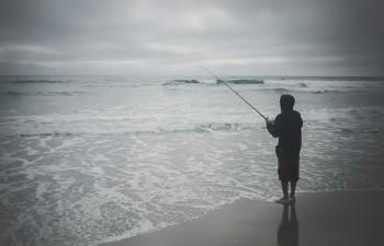 Sam - Monterey