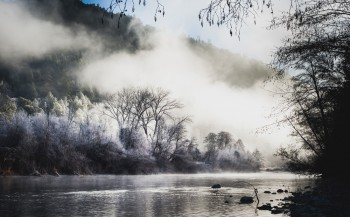Trinity River - Weaverville